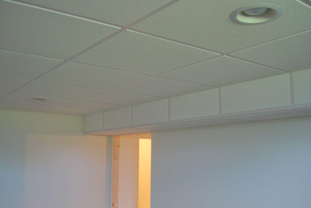 Beautiful Design Of Decorative Drop Ceiling Tiles 2x4 Best Home